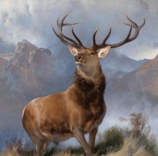 The_Monarch_of_the_Glen,_Edwin_Landseer,_1851